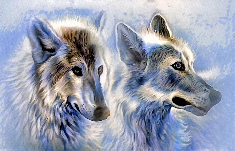 Feeding the wolf